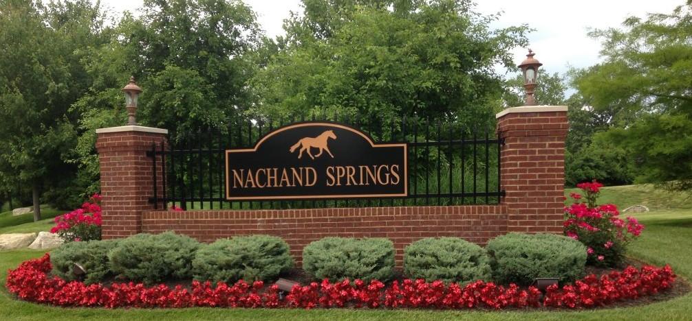 Nachand Springs Condominium Community